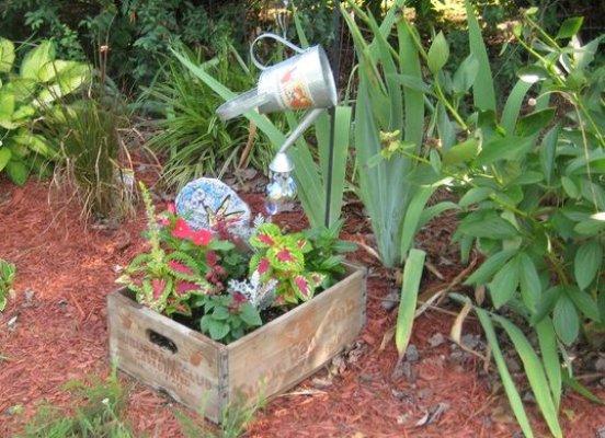 Nell Stelzer'crate in the garden