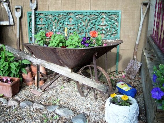 Julie Brown's wheelbarrow