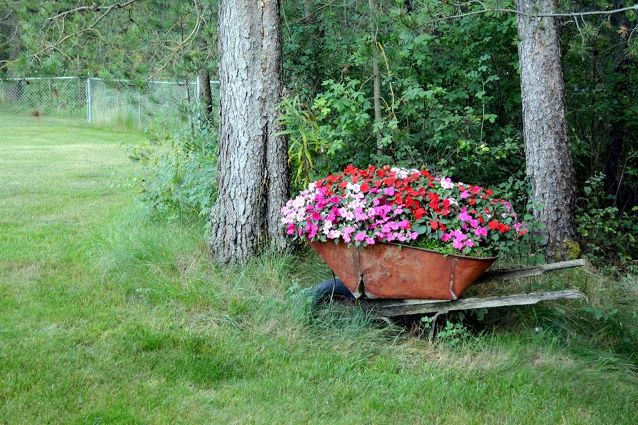 Rita Michalak placed her wheelbarrow as if someone just left it there from out of the woods.