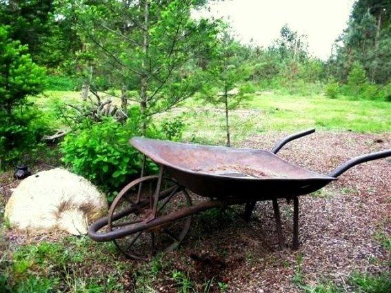 Transform Empty Backyard : Kirk Williss vintage wheelbarrow, with the very desirable metal wheel
