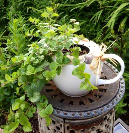 Tea with mint, anyone