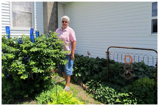 Nancy K. Meyer among her hosta