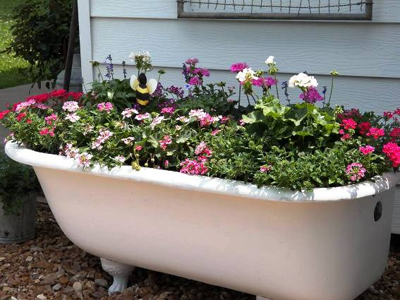 Tammy Blair-Lack‎'s tub overflows with flowers!