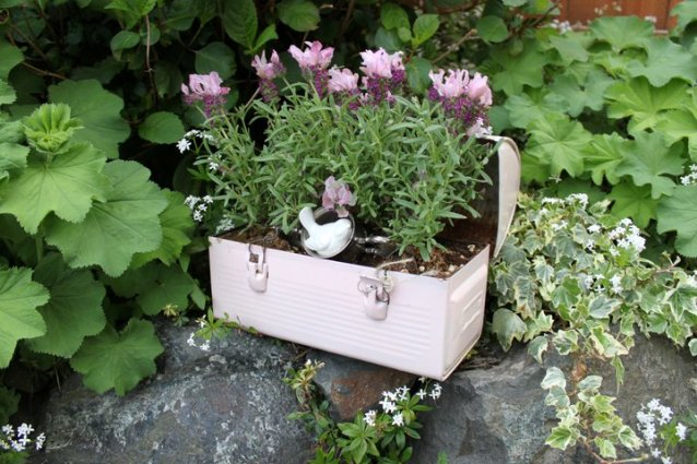 Fishtail Cottage's quaint little flower box