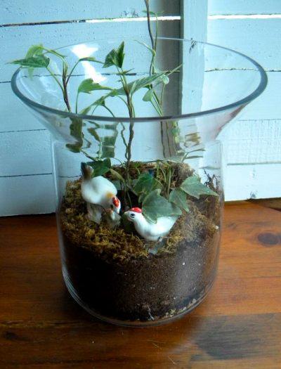Joyce Collins's mini garden in a clear vase