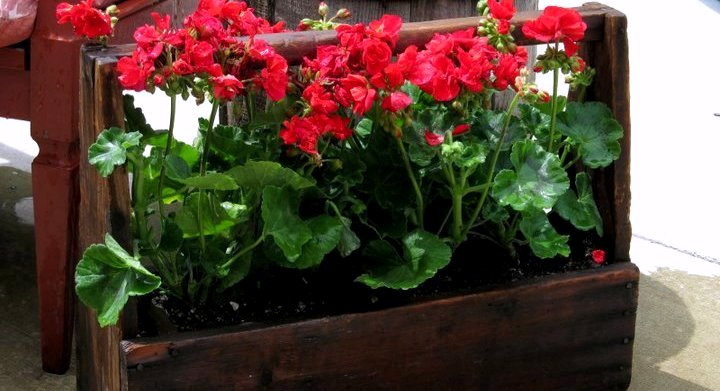 Fun Garden Projects From Used Wood Flea Market Gardening
