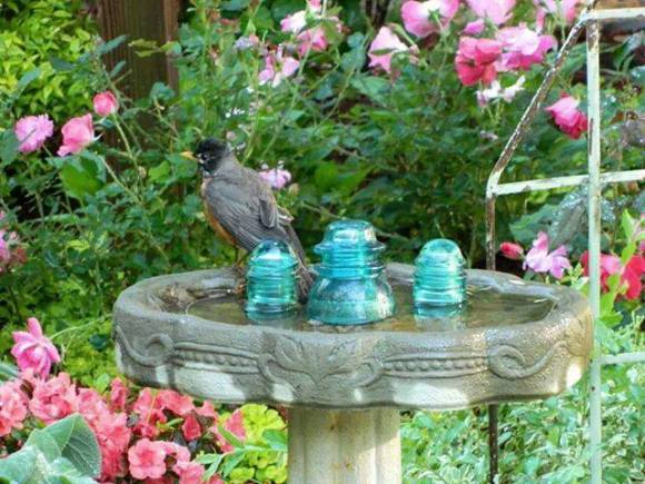 Aqua Insulators attract a robin