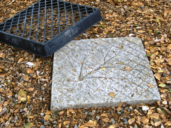 Sue Langley's easy stepping stone