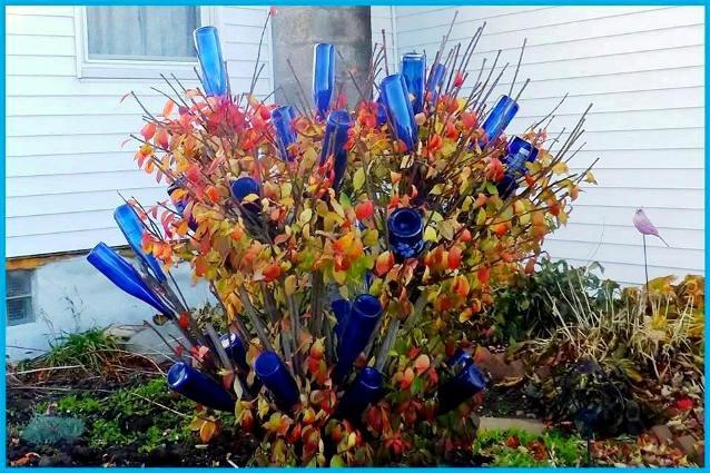 Nancy K. Meyer's stunning burning bush