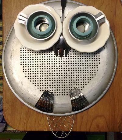 Ann Elias's owl assemblage
