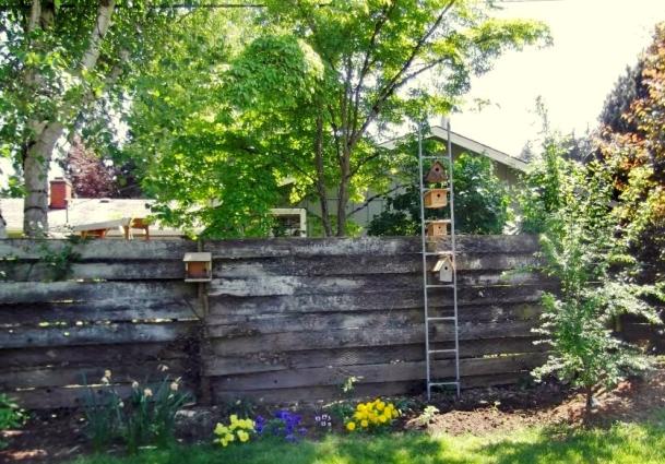 Make Barb Pawlik's birdhouse ladder