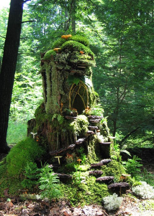 Sally J Smith's majestic mossy fairy mansion