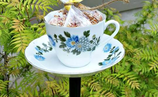 China teacup bird feeder