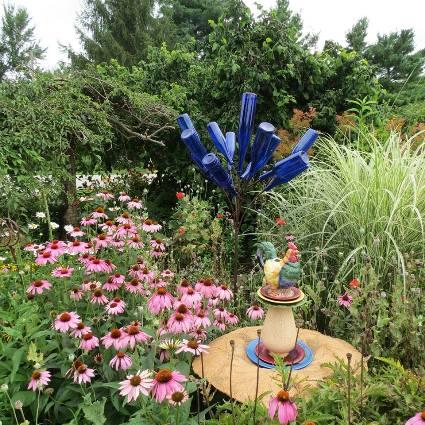 Diana Daily's garden
