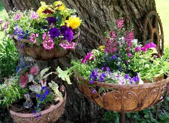 Myra transformed a'plain Jane' planter into this!