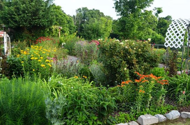 Here's Christy's stunning flower bed in June of last year