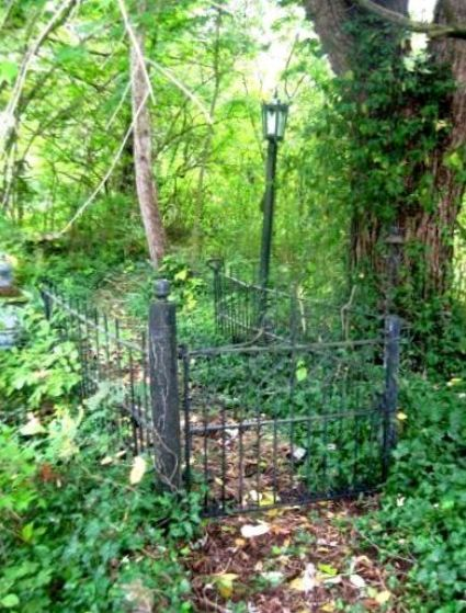 Laura Goines installed a mysterious gate in her woodland garden