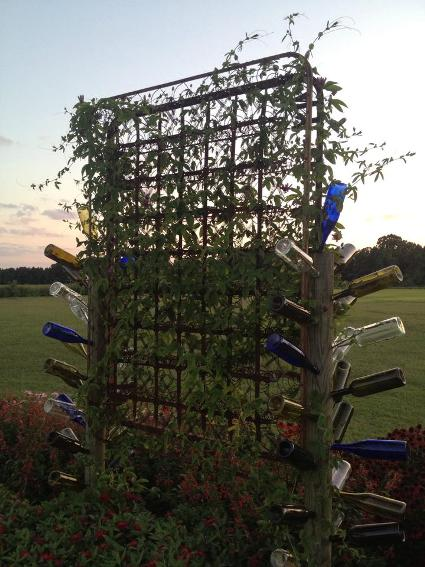 Another idea,...a bed spring trellis and more recycled bottles