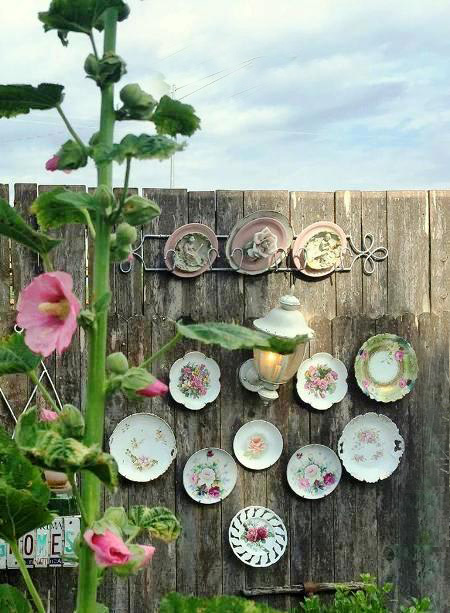 Plates on the wall of my garden