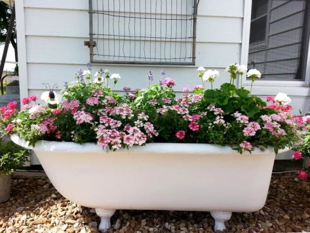 Tammy Lack's stunningly beautiful tub planter, now