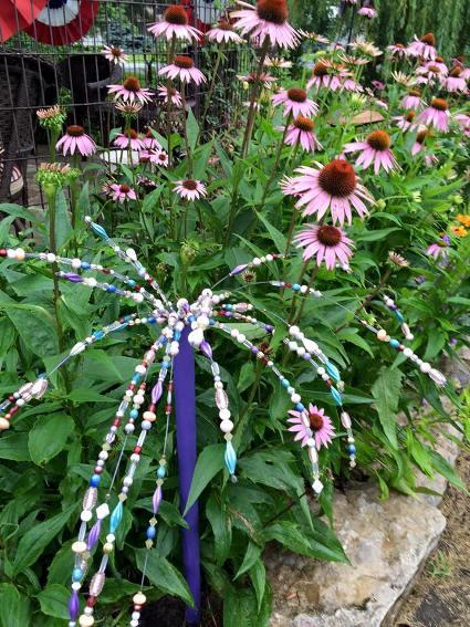 Myra Glandon My garden sparkler is still looking good. .. Year 3
