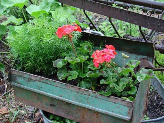 Jeanne Sammons's planter box