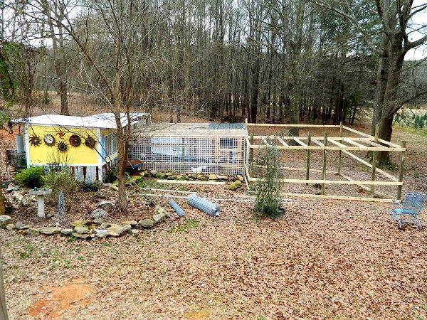 Dandi Gentry's chicken coop garden
