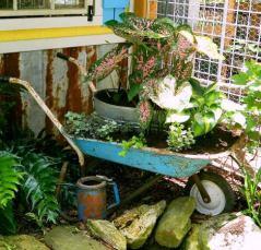 Dandi Gentry's chicken coop garden (22)