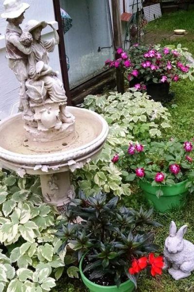 A shady flower-filled pocket garden
