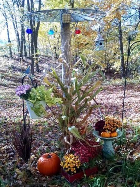 Bird feeder pole is a garden accent in Fall