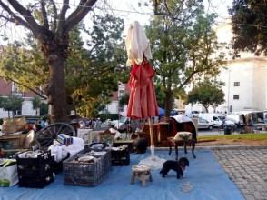 feira-da-ladra-lisbon-2