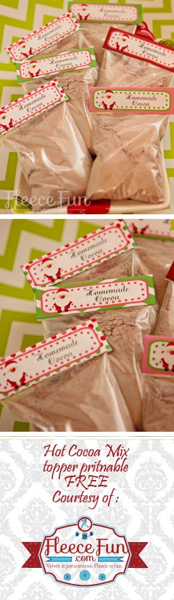I love this idea of cure little single servings of hot cocoa.  Plus there's free printable for the topper!  Great handmade gift DIY.