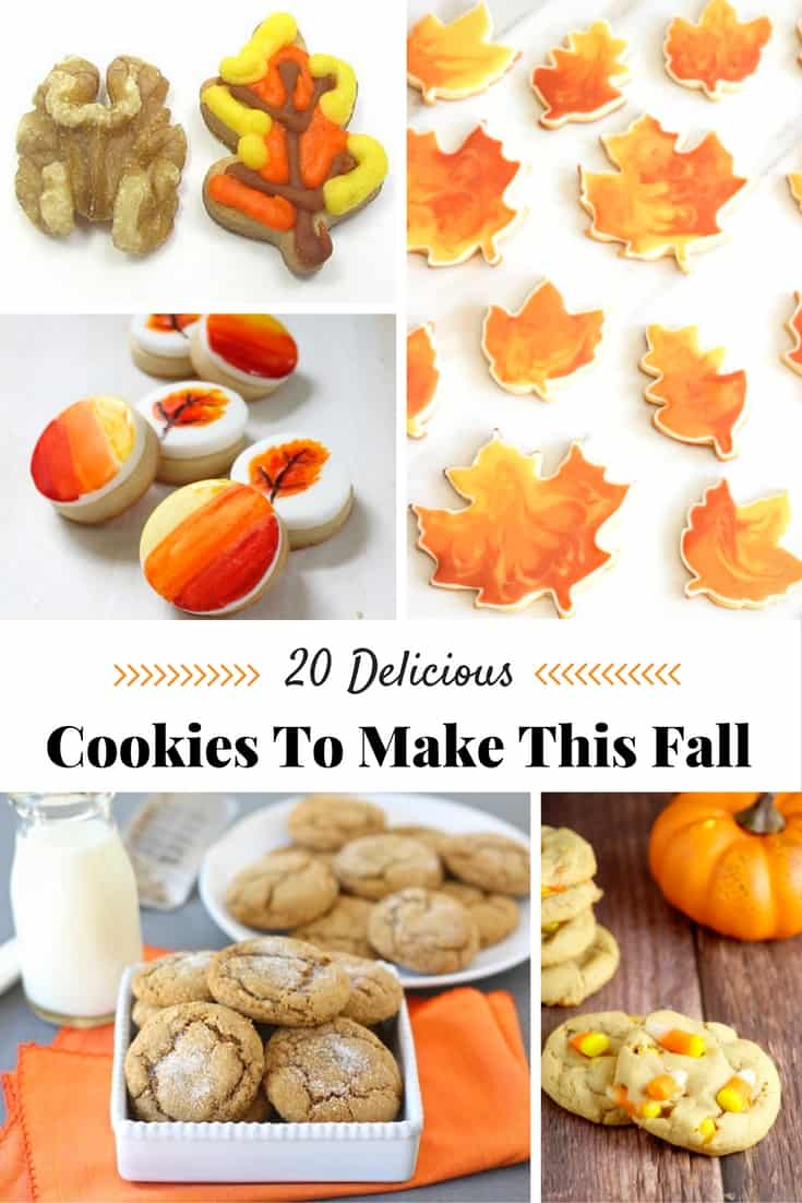 What a wonderful collection of fall cookie recipes to try.  There are so many yummy ones to pick from.