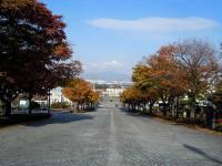Motoizaka Slope(基坂)