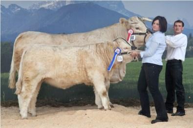 National Champion female 2010: LIBERTY (V: RICHARD FR) A: Ebner Johann Jun., 9562 Himmelberg, KRZV (© Stephan Hauser)