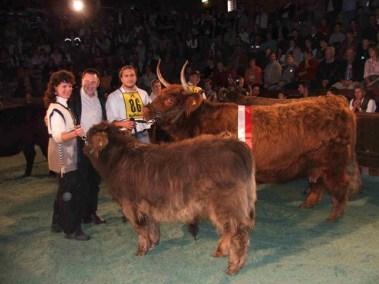 Familie Behringer mit Superchampion YUWEL (V: Crabat DE) mit einem Stierkalb von Ben bei Fuß. (Foto: Landwirt.com)