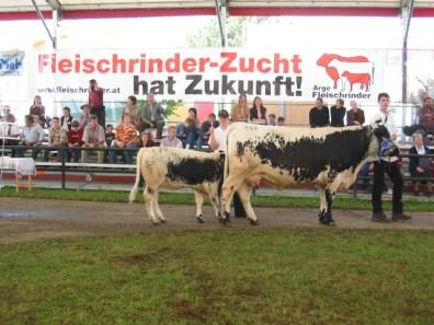 Bundesreservesiegerin Pustertaler Sprinzen: Romi PSS von Familie Spitzbart, Laakirchen