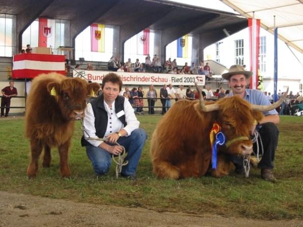 Bundesreservesiegerin und erstplatziert in der Gruppe Hochlandrinderkühe mit Kalb: Peatrice (V: Lopez) von Fam. Pirchner, Rauris