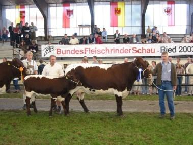 Bundesreservesiegerin Bregenz (V: Haller-Watzer) von Familie Dick, Maishofen