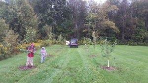 children planting trees - children-planting-trees