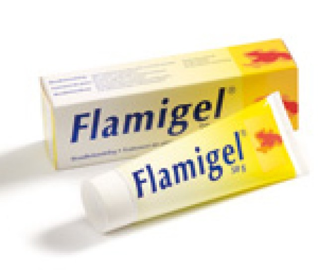 Read More About Flamigel