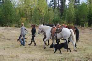 Cariboo Chilcot Horseback Riding