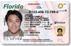 licencia CDL florida