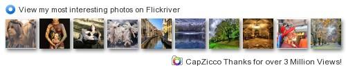 CapZicco - Le mie foto più interessanti su Flickriver