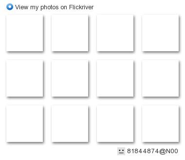 scissorina - View my 'Dumpling Night!' set on Flickriver