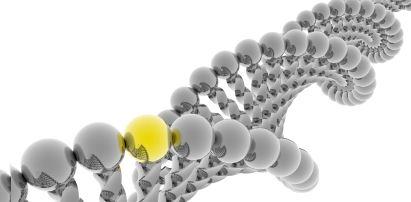 Biological-methods-for-gnat-removal