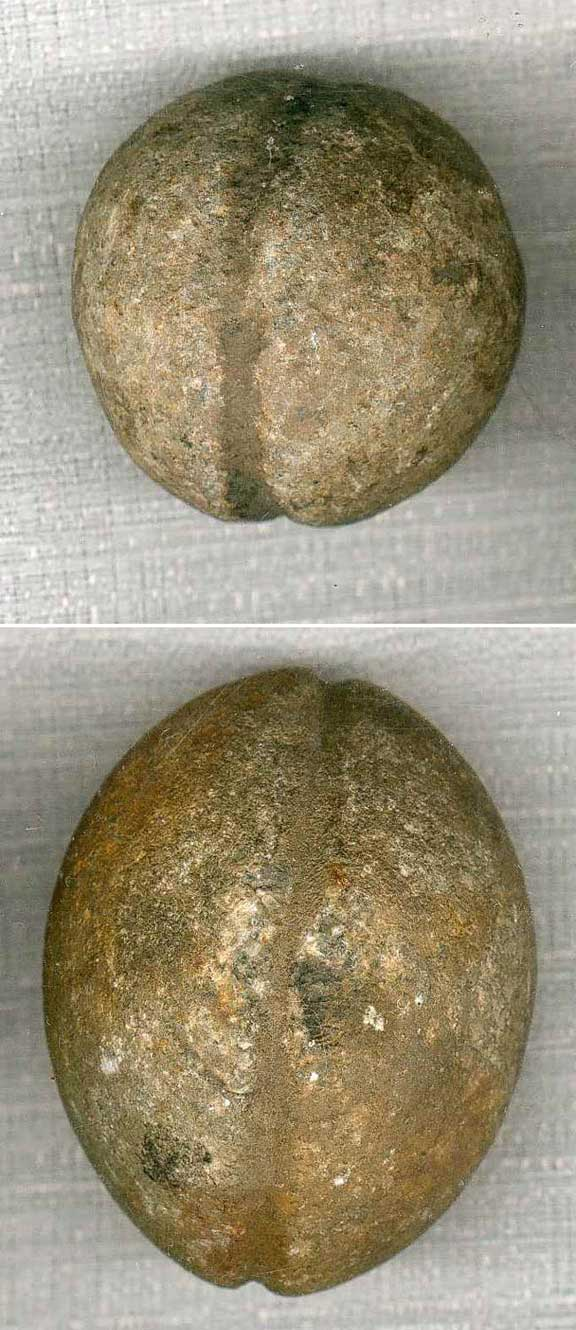 Prehistoric Bola Or Boleadora Stone Artifact From Uruguay