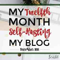 Interested in self-hosting your blog? This is a great overview of one blogger's twelfth month blogging, including how Elite Blog Academy helped her and new year goals! Really cool to see how it's done!