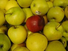 A Jobs lot of Apples