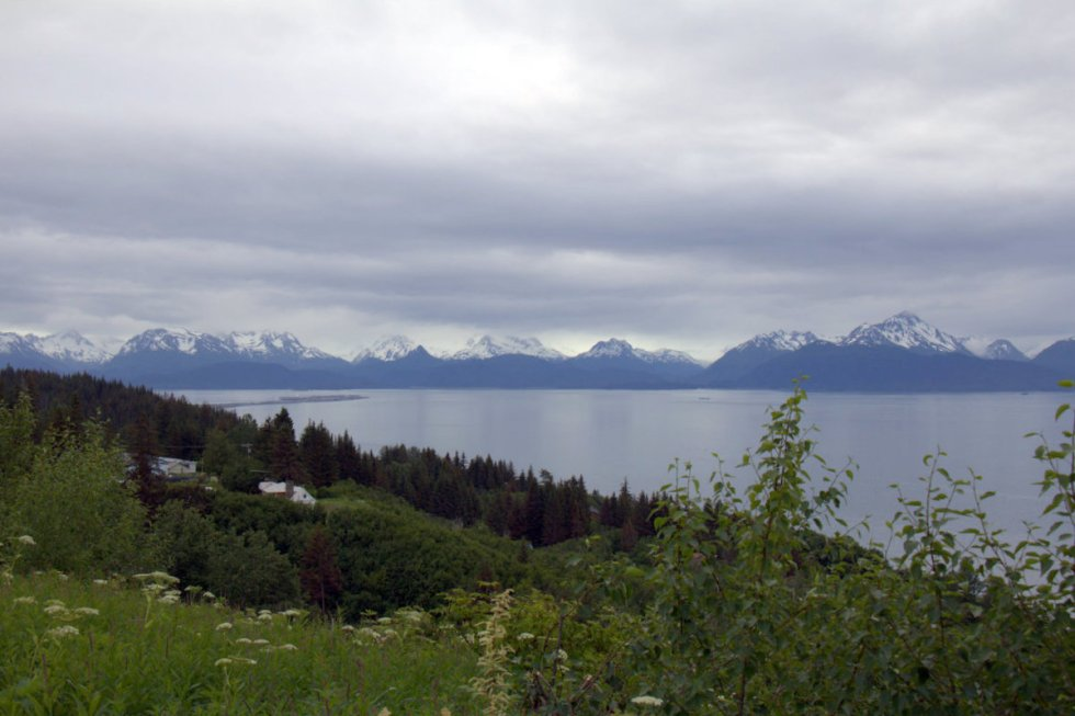 View over Homer and the Spit